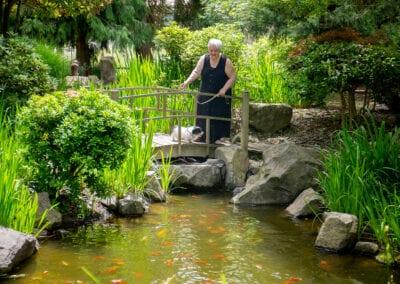 resident on a bridge over a Koi pond